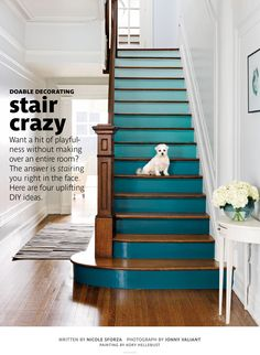 Gorgeous Ombre Staircase - in my next home - grand staircases