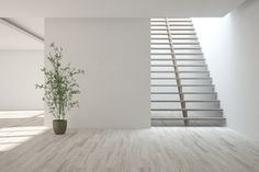 White empty room with stair. Scandinavian interior design. 3D illustration