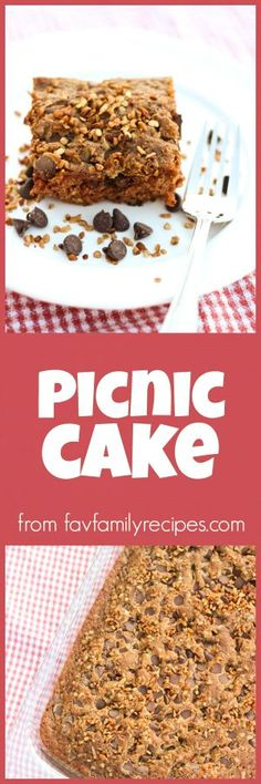 This Picnic Cake is so rich and dense and the chocolate chip topping is divine. It is perfect for feeding a crowd and so easy to transport! via @favfamilyrecipz