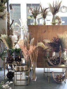 Dry Flowers, Plants, Planting, Flower Preservation, Flora, Plant, Dried Flowers