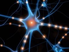 Neural pathways- These are the guys that keep you stuck in your patterns! I know how to make new ones!!
