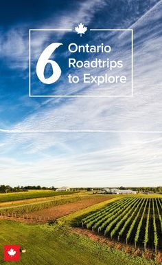 Hit the road and explore the cities and countryside in this beautifully diverse province.