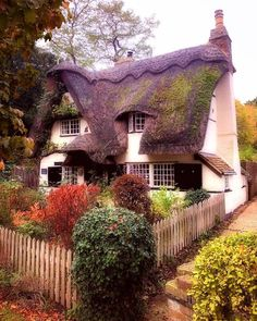 Such a sweet and cosy Cottage somewhere in the UK. Fairytale Cottage, Garden Cottage, Cottage Homes, Cute Cottage, Cottage In The Woods, Cottage Style, Irish Cottage, Storybook Homes, Storybook Cottage