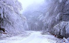 Snow heaviness