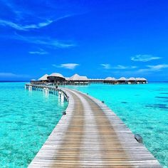 Hotels-live.com/cartes-virtuelles #MGWV #F4F #RT Adorable way to the #Spa and #Gym in #paradise  #maldives #island #life - I just can't wait  ___ #picture from our #trip to Coco Bodu Hithi #Resort ___ #travellersplanet #travellersplanetmaldives by travellersplanet https://www.instagram.com/p/BE3b83rKLIF/