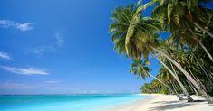 Screensavers for Desktop of Tropical Beaches Best Caribbean Beaches Strand Wallpaper, Beach Wallpaper, Hd Wallpaper, Wallpapers, Dream Vacations, Vacation Spots, Vacation Days, Beach Vacations, Vacation Packages