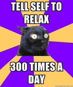 ANXIETY CAT | ---This is literally my life some days. ~@glamour_scars