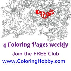 Sneak peek for this coming week. We have these 4 beautiful coloring pages that will be released on Monday. And we will be coloring one of them together. Join the Club. It's free. www.coloringhobby.com  Tell me which one is your favorite :-) I pick the one with the little exotic birds.