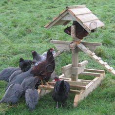 Chicken Jungle Gym™