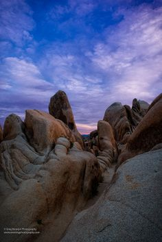 Joshua Tree National Park, California; photo by Gregory Boratyn on 500px