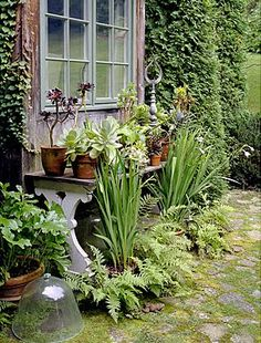 #garden #potting #bench