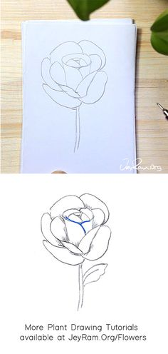 How to Draw a Rose : Step by Step for Beginners — JeyRam Art Roses Drawing Tutorial, Flower Drawing Tutorials, Rose Tutorial, Beginner Drawing, Drawing For Beginners, Flower Step By Step, Step By Step Drawing, Learn To Sketch, How To Make Rose