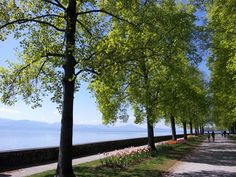 A parc along Lac Leman (for the locals) and Lake Geneva (for the international crowd)