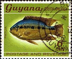 Guyana 1968 Fish SG 452 Black Acara Fine Used Scott 43 Other West Indies and British Commonwealth Stamps HERE!