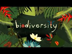 "TED-Ed Video: ""Why is biodiversity so important?"" 