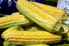 Los resultados, publicados en la revista European Journal of Agronomy, han revelado que las sustancias orgánicas que contiene este biofertilizante permiten que la planta pueda absorber mejor los nutrientes y de esta forma facilitar su crecimiento. In
