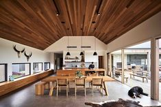 Gallery of Ceres House / Dan Gayfer Design - 18