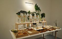 Brilliant: Botanica by FormaFantasma
