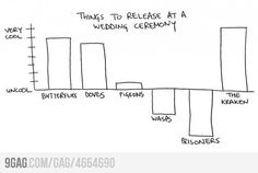 Things to release at a wedding ceremony. Gotta take notes... ;)