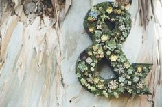 Moss and Succulents Wedding Sign