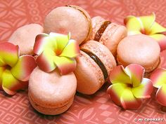 Guava Macarons!  Must make this!  I have the drink mix and the jam all in my cupboard and everything.