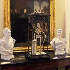 """ Memento mori "" in a collective exhibition with UMAM in fine arts museum Menton ( France ) #assemblage #assemblageart #skull #skulls #vanity #filigree #renaissance #bone #bones #skulltattoo #tatoo #tat #baroque #baroquestyle #ornament #gothic #skeleton"