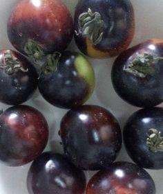 cà chua đen Fruit