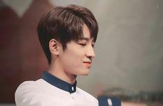 #Seventeen#Wonwoo全圓佑