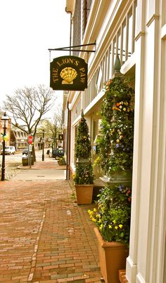 The Lion's Paw is located on the famous cobblestoned Main Street and best known for its beautiful linens, gifts, and furniture.