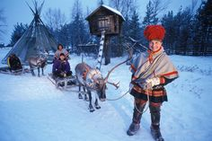 The brightly attired reindeer herding tribe of Scandinavia are one of the few indigenous people left in Europe. Kola Peninsula, Indigenous Tribes, Lappland, Tribal People, Norse Vikings, Folk Dance, Beautiful World, Beautiful People, People Of The World