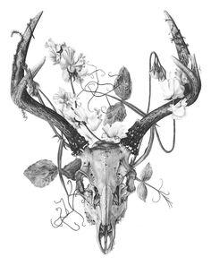 Deer Skull Tattoo Design - Impressive black and gray deer skull . - Deer Skull Tattoo Design – Impressive black and gray deer skull with flowers. Deer Skull Tattoos, Skull Tattoo Design, Deer Skulls, Animal Skulls, Tattoo Designs, Tattoo Ideas, Deer Skull Drawing, Antler Tattoos, Paw Print Tattoos
