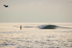 P E R F E C T I O N / north sea / denmark / surfing / #coldwatersurf