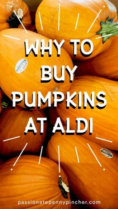 Aldi Pumpkins are NOW in store! These historically go as low as $2 a pumpkin, so be sure to keep an eye out. Perfect for Fall decorating! Aldi has one of the best prices for nice BIG pumpkins around – just $4.99 currently! And guys – they have SO MUCH MORE cute Fall Stuff in stores right now. Biggest Pumpkin, Autumn Activities, Budgeting Tips, A Pumpkin, Fall Decorating, Frugal, Saving Money, Good Things, Eye