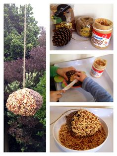 We made a birdfeeder with a pinecone, string, peanut butter and some wild bird seed! Come on birds, we're ready for you!