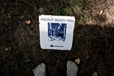 Grand Beach hike Bucket, Hiking, Beach, Walks, Buckets, Trekking, Climbing, Aquarius, Walking