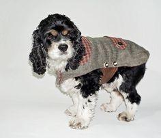 MXL Hunde Trachtenmantel aus feinem weichen von fraubOLZadesign,