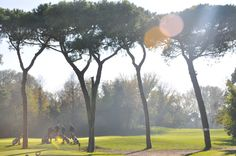 Alberoni Golf Course