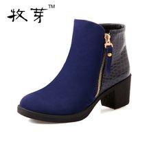 2016 botas femininas automne femmes bottes bottes d'hiver femmes talon épais cheville bottes(China (Mainland))