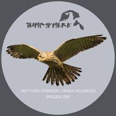 Turmfalke Episode One by Frank Hellmond // Matthias Springer Trance, Edm, Techno, Music, House, Kestrel, Musica, Trance Music, Musik