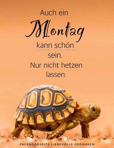 Autonomous motivation for a behavior is theorized to be a. Monday Greetings, Monday Humor, Kahlil Gibran, Word Pictures, More Than Words, Happy Weekend, Happy Monday, Good Thoughts, Good Morning