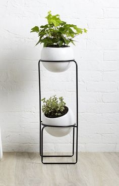 Nesta Ceramic Pot Planter & Reviews | AllModern