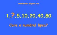 formuleonline probleme si exercitii rezolvate: Ghicitoare matematica 116