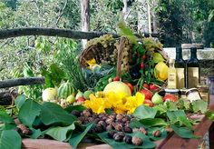 Agriturismo Castiglioncello, Tuscany. Enjoy the products of our land - organic vegetables, olive oil, herbs, fruits, honey and jams http://www.organicholidays.co.uk/at/2317.htm