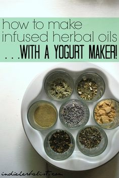 A yogurt maker can multitask as a great place to make your herbal oil infusions. // indie herbalist