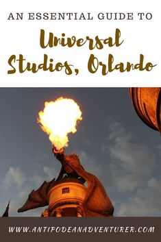 An Essential Guide to Universal Studios in Orlando, Florida! Travel Goals, Travel Tips, Travel Destinations, Travel Articles, Travel Guides, Universal Orlando, Universal Studios, Orlando Vacation, Orlando Florida