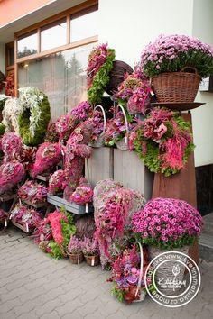 Kolekce | Dušičky | Květiny Petr Matuška Brno - dekorace, floristika, řezané květiny, svatební kytice