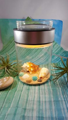 Let your creative side soar with the Make a Scene Scentsy warmer!
