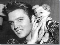 Elvis and Pom
