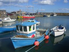 Google Image Result for http://www.yourlocalweb.co.uk/images/pictures/15/80/boats-at-stonehaven-harbour-155619.jpg
