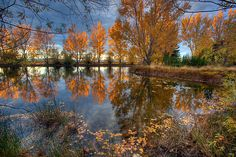 Autumn in Otago